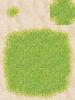 017-Sa_Grass01