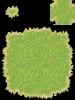 041-Grass01