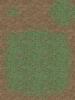 060-CE_Grass01
