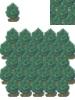Forest--Spivurno