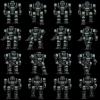 bot11