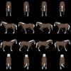 horse-shetlandish